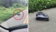 Жена вижда мърдаща торба на пътя и когато спира да види какво има вътре...