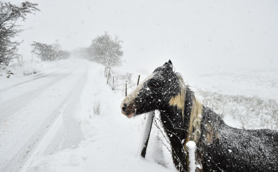 Зима в Ирландия