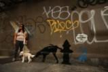 Новият графит на Банкси в защита на турска художничка