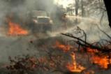 Горски пожари бушуват в Калифорния