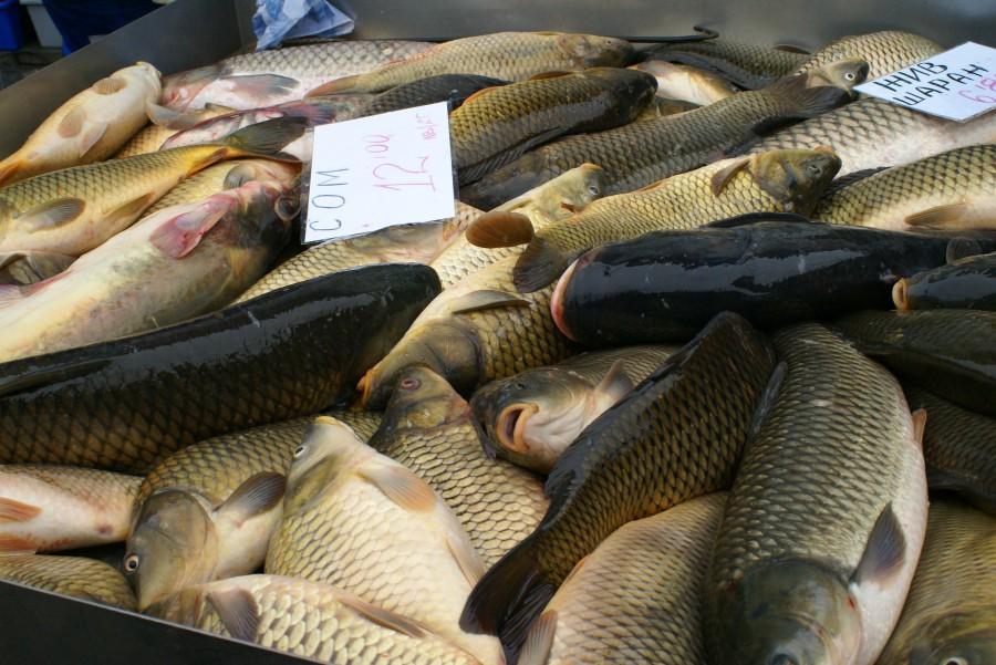 Риба за Никулден