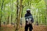 Ще оцелее ли гората Хамбах?