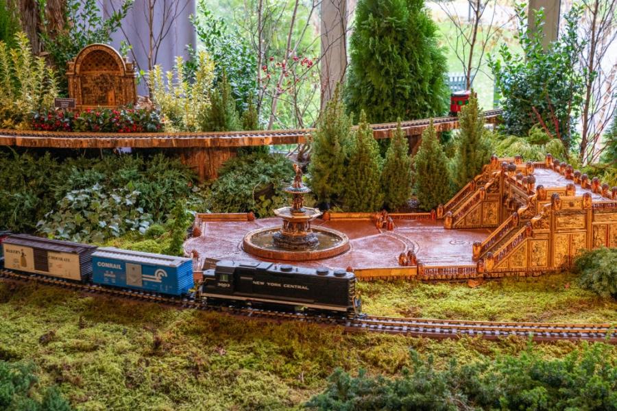 Влакове и гари от семена и гъби