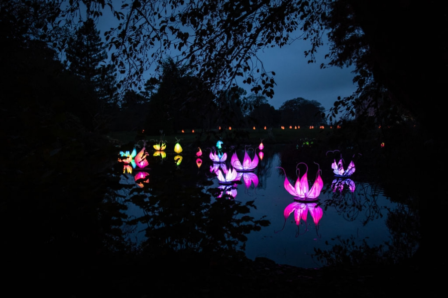 Фестивал на светлините в Haywards Heath