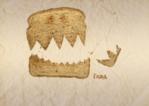 1 април в Музея на хумора и сатирата
