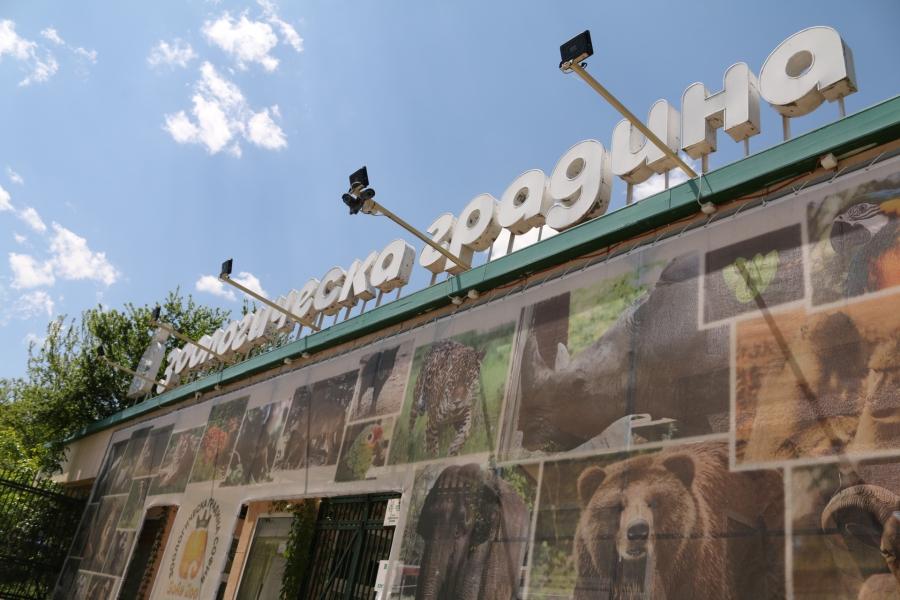 Зоологическата градина в София отваря врати
