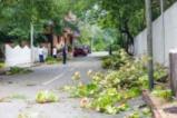 Разрушенията от урагана