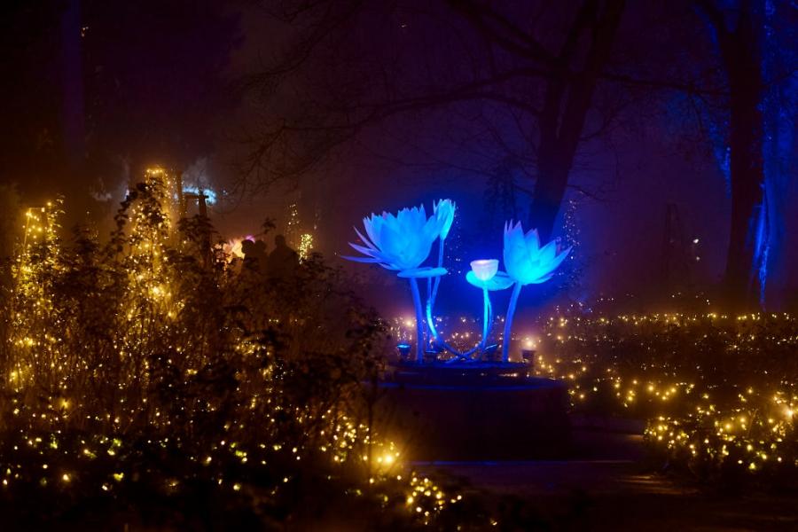 Кралската ботаническа градина в Мадрид