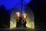 Светлинно шоу в зоологическата градина в Честър