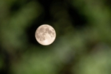 В очакване на Супер луната