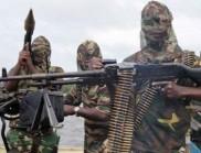 30 000 нигерийци избягаха в Камерун заради джихадисти