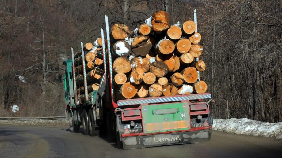 Цените на дървата за огрев у нас няма да скачат