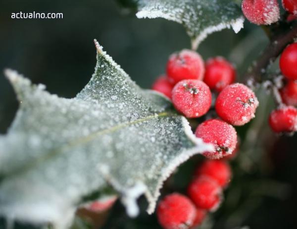 photo of Прогноза за времето - 27 ноември (понеделник)
