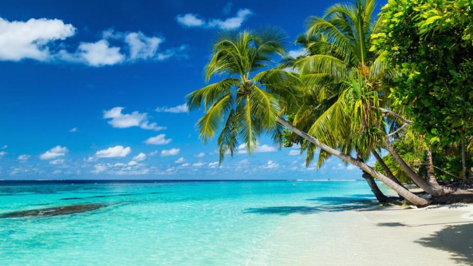 Малдивските острови скоро ще предлагат на туристите ваксинация срещу COVID-19