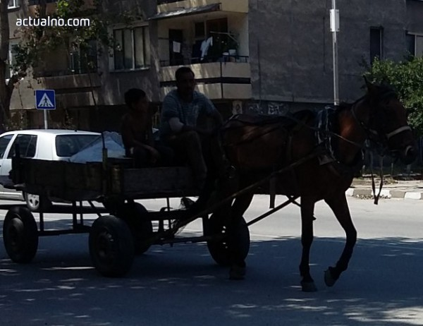 photo of Сблъсък на кола с каруца вкара двама в болницата в Добрич
