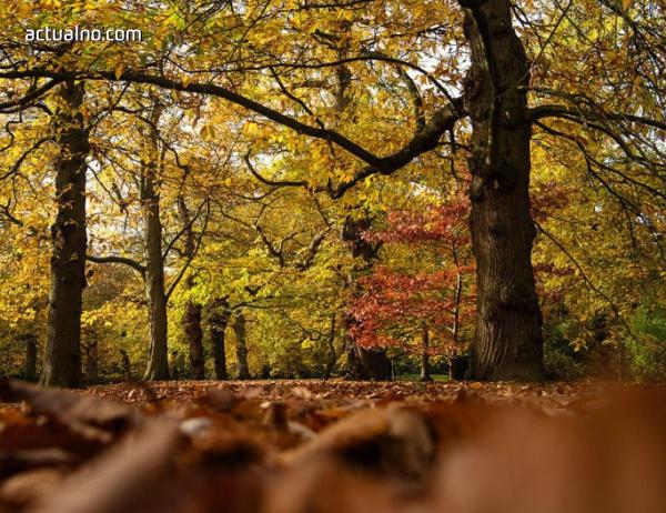 photo of Прогноза за времето - 4 ноември (събота)