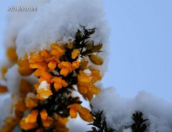 photo of Прогноза за времето - 26 март (понеделник)