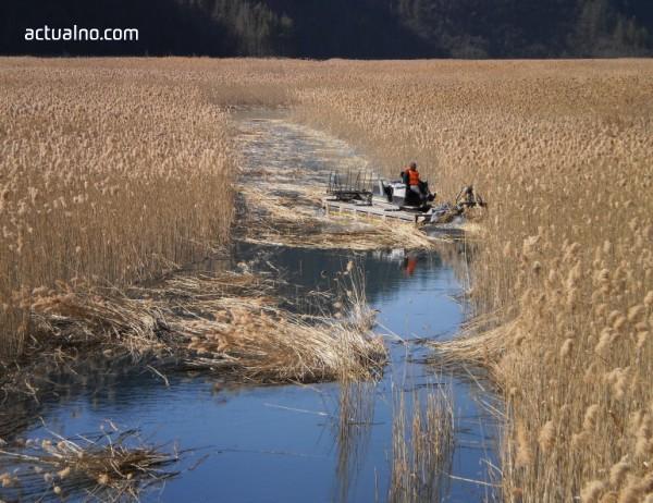 """photo of Режат тръстиката в хвостохранилище """"Ерма река"""", за да не мъти водата"""