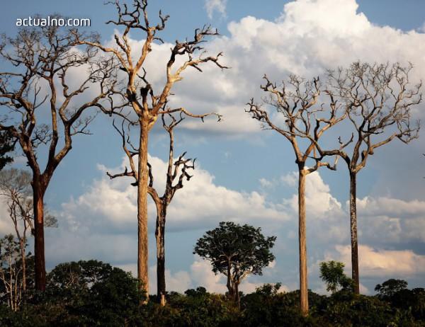photo of ООН отново поиска спешни мерки за глобалното затопляне