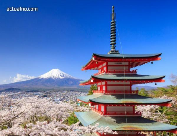 photo of В какво се крие тайната на японското дълголетие?