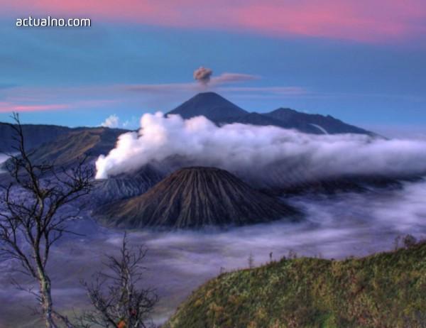 photo of VIASAT WORLD отбелязва Денят на Земята  със специална програма по VIASAT NATURE
