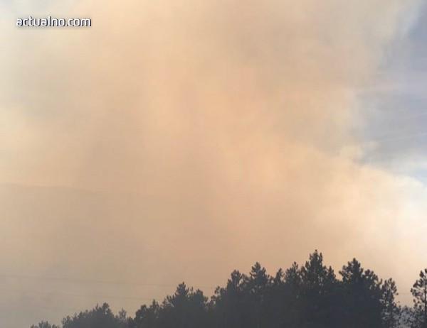 photo of Мъж и жена загинаха при пожар в дома си в Ново село