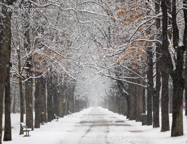 photo of Прогноза за времето - 6 януари (неделя)
