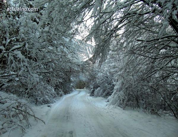photo of Прогноза за времето - 9 януари (сряда)