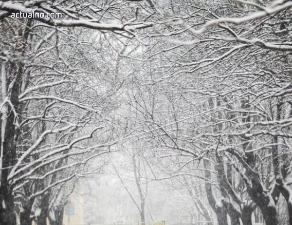 photo of Нова студена вълна удря България