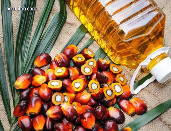 photo of Палмовото масло в храната води до затлъстяване и развиване на хронични болести
