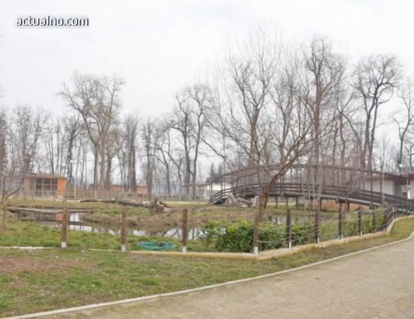 photo of Дадоха официален рестарт на зоопарка в Пловдив (СНИМКИ)